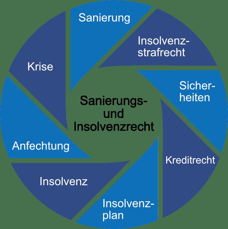 Sanierungs Insolvenzrecht Kreisgrafik